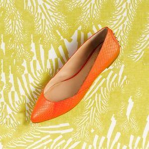 Vince Camuto Alley Studded Flats Orange Snake 9.5